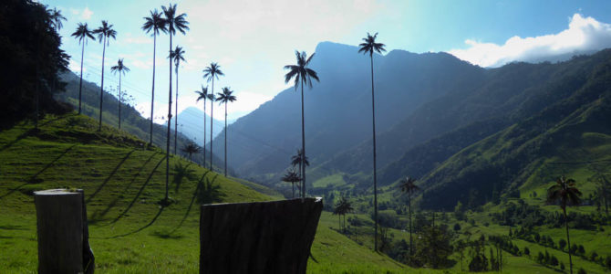 Colombia's Coffee Country
